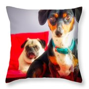 Dachshund Dog, Pug Dog, Good Time On Bed Throw Pillow