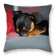 Dachshund Dog, Pug Dog, Good Time On Bed, Sleeping Throw Pillow