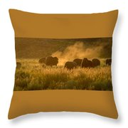 Daddy Bull And The Rut Throw Pillow