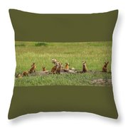 Daddy's Foxy Daycare Throw Pillow