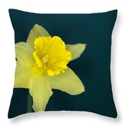 Daffo The Dilly Throw Pillow