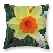 Daffodil 0796 Throw Pillow
