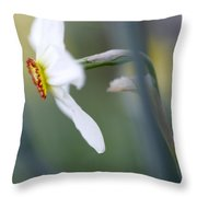 Daffodil 3 Throw Pillow