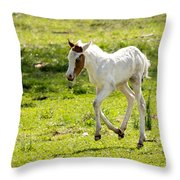 Romping Through The Field Throw Pillow
