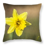 Daffodil Composite Throw Pillow