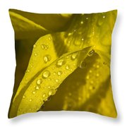 Daffodil Dew Throw Pillow