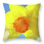 Daffodil Flowers Artwork 18 Spring Daffodils Art Prints Floral Artwork Throw Pillow by Baslee Troutman