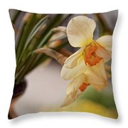 Daffodil Flowers Throw Pillow