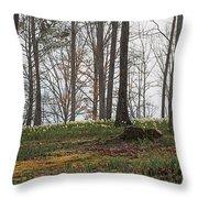 Daffodil Hill Throw Pillow