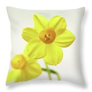 Daffodil Strong Throw Pillow