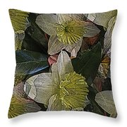 Daffodil Study Throw Pillow