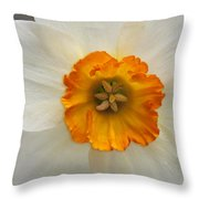 Daffodil Texture Composite Throw Pillow