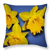 Daffodil Trio Throw Pillow