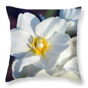 Daffodil Up Close Throw Pillow