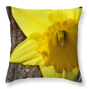 Daffodil Wood Composite Throw Pillow