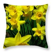 Daffodils 2010 Throw Pillow