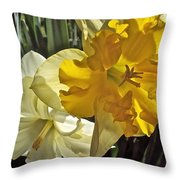 Daffodils 4 Throw Pillow
