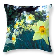 Daffodils And The Oak 2 Throw Pillow