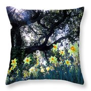 Daffodils And The Oak Throw Pillow