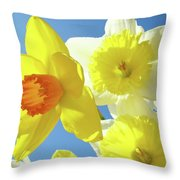 Daffodils Art Print Floral Sky Bouquet Daffodil Flower Baslee Throw Pillow