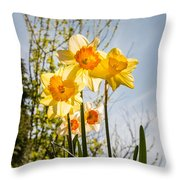Daffodils Backlit Throw Pillow