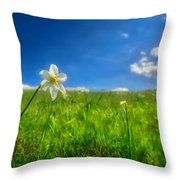 Daffodils Blossimg At Cavalla Plains 2017 Vi - Fioritura Dei Narcisi Al Pian Della Cavalla 2017 Throw Pillow