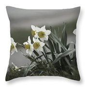 Daffodils Desaturated Throw Pillow