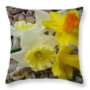 Daffodils Flower Artwork 29 Daffodil Flowers Agate Rock Garden Floral Art Prints Throw Pillow