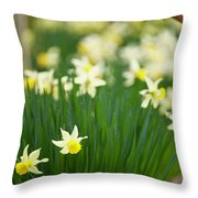 Daffodils In A Bunch Throw Pillow