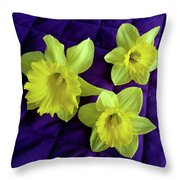 Daffodils On A Purple Quilt Throw Pillow