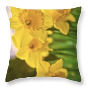 Daffodils V2 Throw Pillow