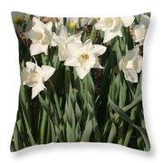 Dafodil001 Throw Pillow