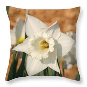 Dafodil168 Throw Pillow