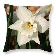 Dafodil211 Throw Pillow