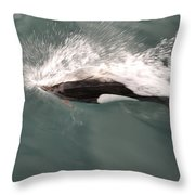 Dahl Dolphin Throw Pillow