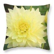 Dahlia Blossom Yellow Throw Pillow