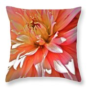 Dahlia Blush Throw Pillow