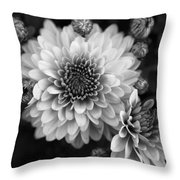 Dahlia Burst B/w Throw Pillow