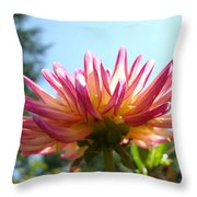Dahlia Floral Garden Art Prints Canvas Summer Blue Sky Baslee Troutman Throw Pillow