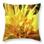Dahlia Flower Art Collection Giclee Prints Baslee Troutman Throw Pillow