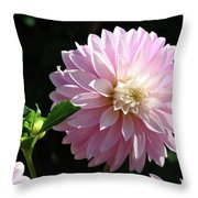 Dahlia Flower Art Pink Dahlias Giclee Art Prints Baslee Troutman Throw Pillow