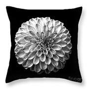 Dahlia  Flower Black And White Square Throw Pillow
