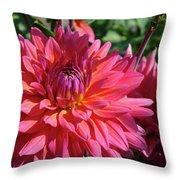 Dahlia Flowers Garden Art Prints Baslee Troutman Throw Pillow