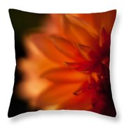 Dahlia Fueur Throw Pillow