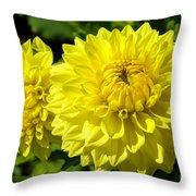 Dahlia Garden 3 Throw Pillow