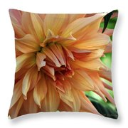 Dahlia In Bloom Throw Pillow