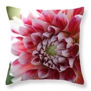 Dahlia Named Hawaii Throw Pillow