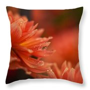 Dahlia Rainshower Throw Pillow