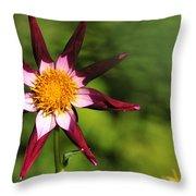 Dahlia Red White And Green Throw Pillow