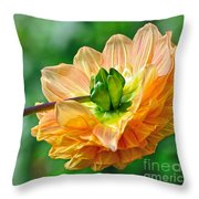 Dahlia Resting Throw Pillow
